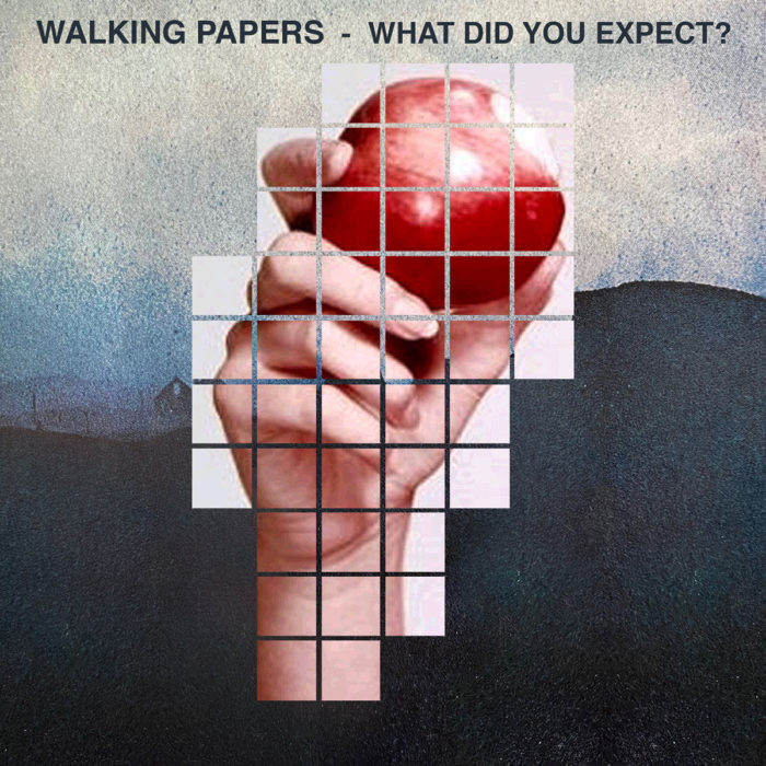 What Did You Expect? (Single) by Walking Papers - Carry On Music